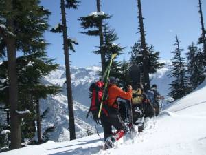 Backcountry-skiing-in-Manali-jungles